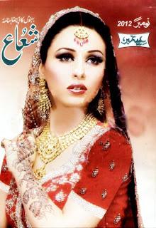 Shuaa Digest November 2012