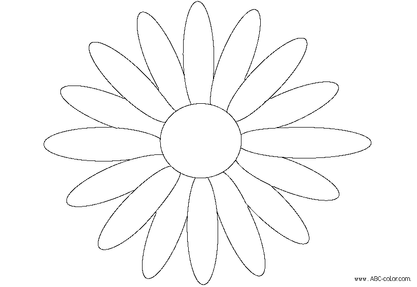 coloring daisies  crafthubs, Natural flower