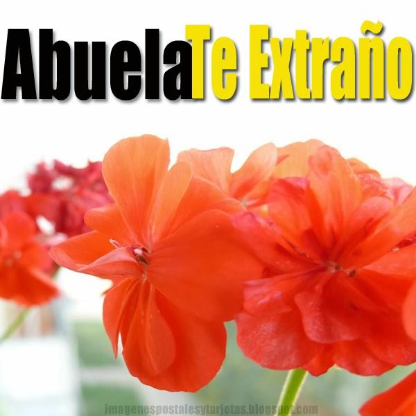 lecturas para la entrega del ramo en catalán frases amor