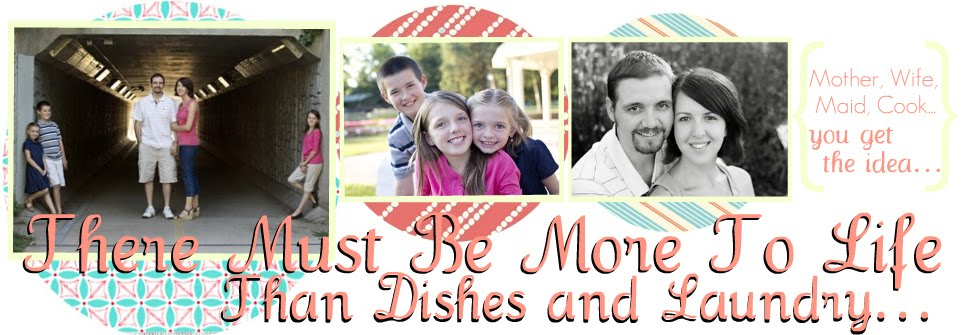 There Must Be More To Life Than Dishes and Laundry...