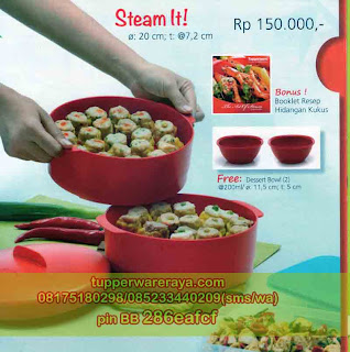 TupperwareRaya-Katalog Tupperware Promo April 2013, Steam It