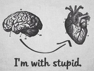 head or heart