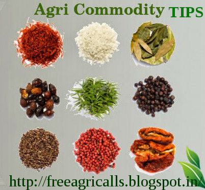 Agri Commodity Tips ,  Commodity free tips  , Commodity intraday tips , MCX Tips Services  , free commodity tips