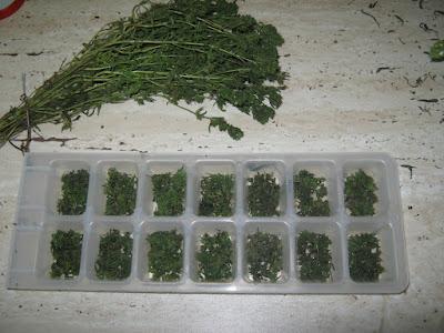cuburi mirodenii