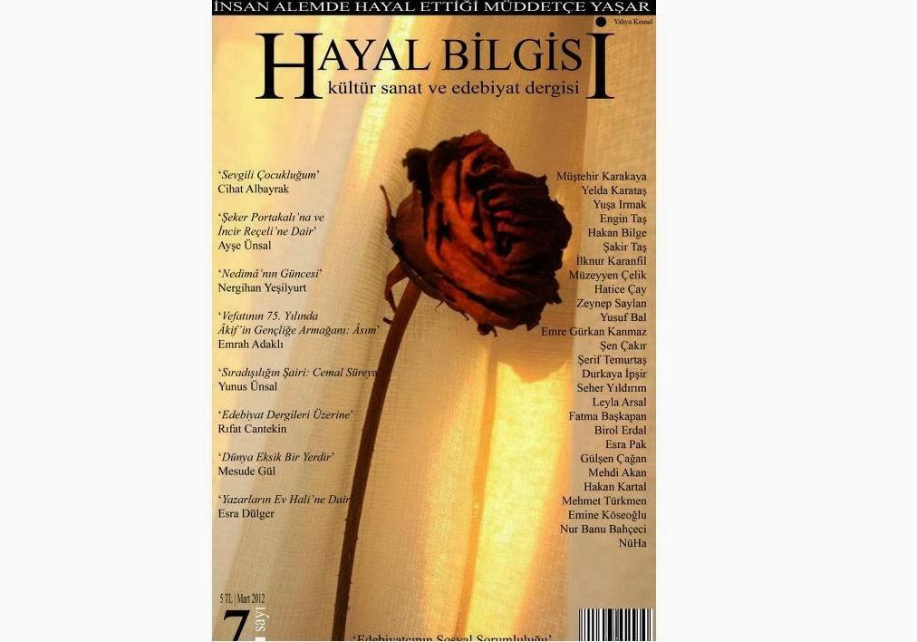 Hayal Bilgisi 7 | Mart 2012