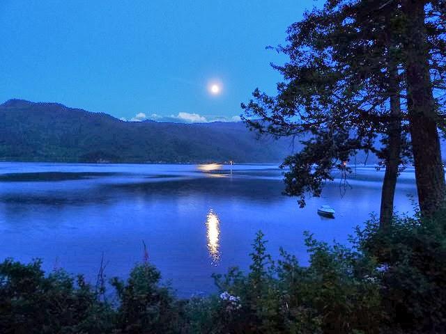 a beautiful night reflection of canim lake canada