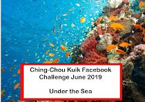 FACEBOOK CHALLENGE - JUNE 2019
