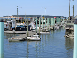 Wellfleet Marina S