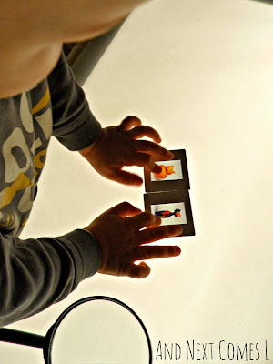 Art appreciation for preschoolers and toddlers using art slides and light from And Next Comes L