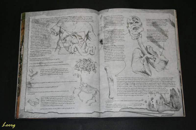 Anatomía de los Ogros en Ejércitos Warhammer: Reinos Ogros
