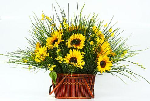 Presentes para Homens Giuliana Flores - Fotos De Flores Para Homens
