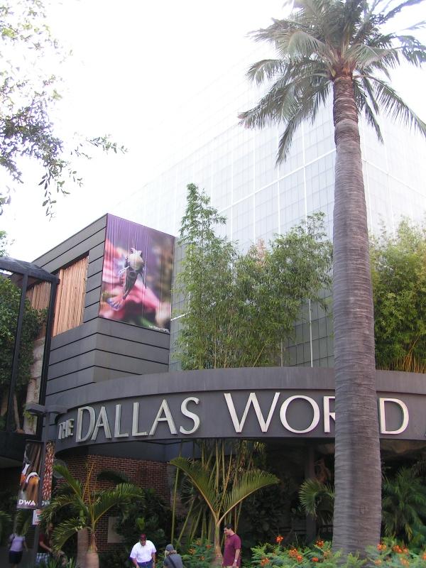 Rocks In My Sandals Dallas World Aquarium