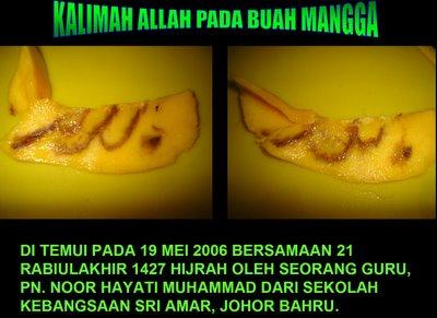 http://2.bp.blogspot.com/-4fZF3LDh-zU/T3klmRuVhYI/AAAAAAAABO0/S2hr90htXGc/s1600/Lafal-allah-di-buah-mangga.jpg