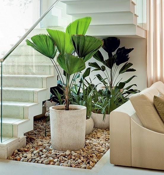 escada jardim madeira : escada jardim madeira:Arquitetura Ene: QUE PLANTAS USAR DENTRO DE CASA?