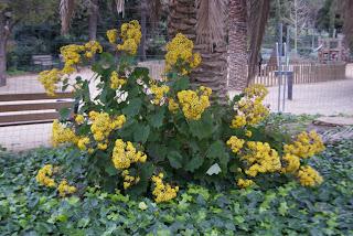 Parc de les Aigües (Barcelona)