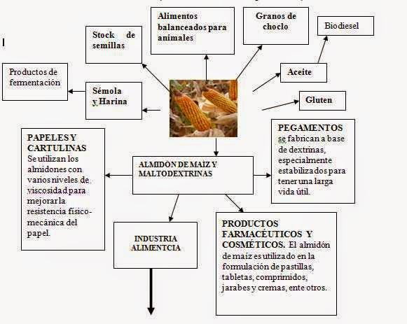 Usos del maiz