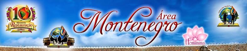 Restauracao Montenegro