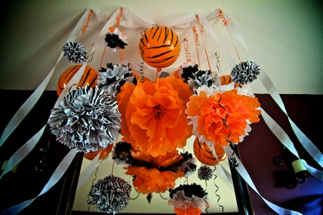 Tiger theme party, tissue pom pom