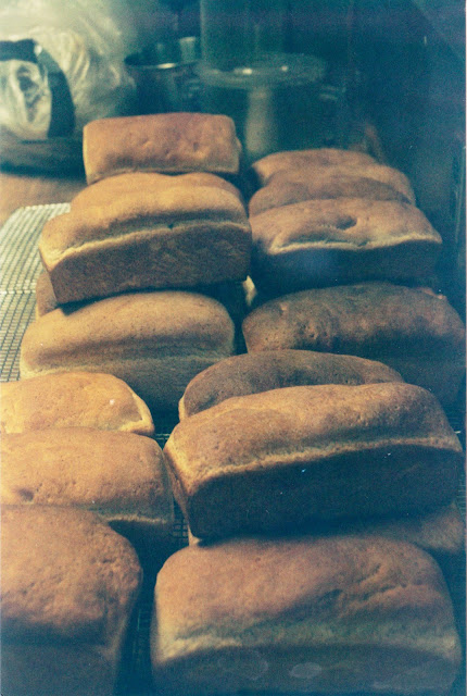 Loaves of Homemade Bread