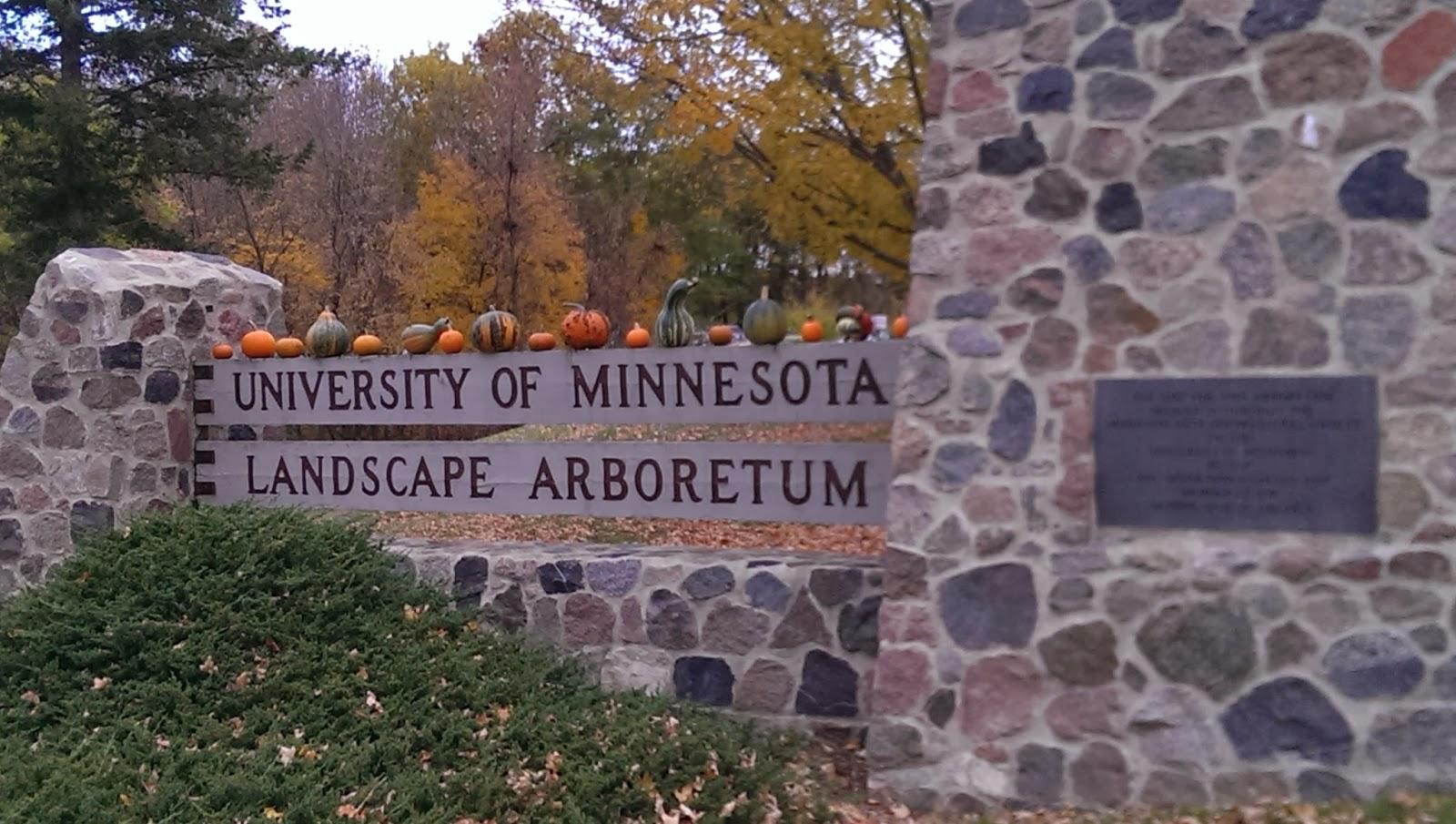 Transplantedchicagoan University Of Minnesota Landscape