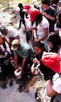 Komunitas Sungai Kuning