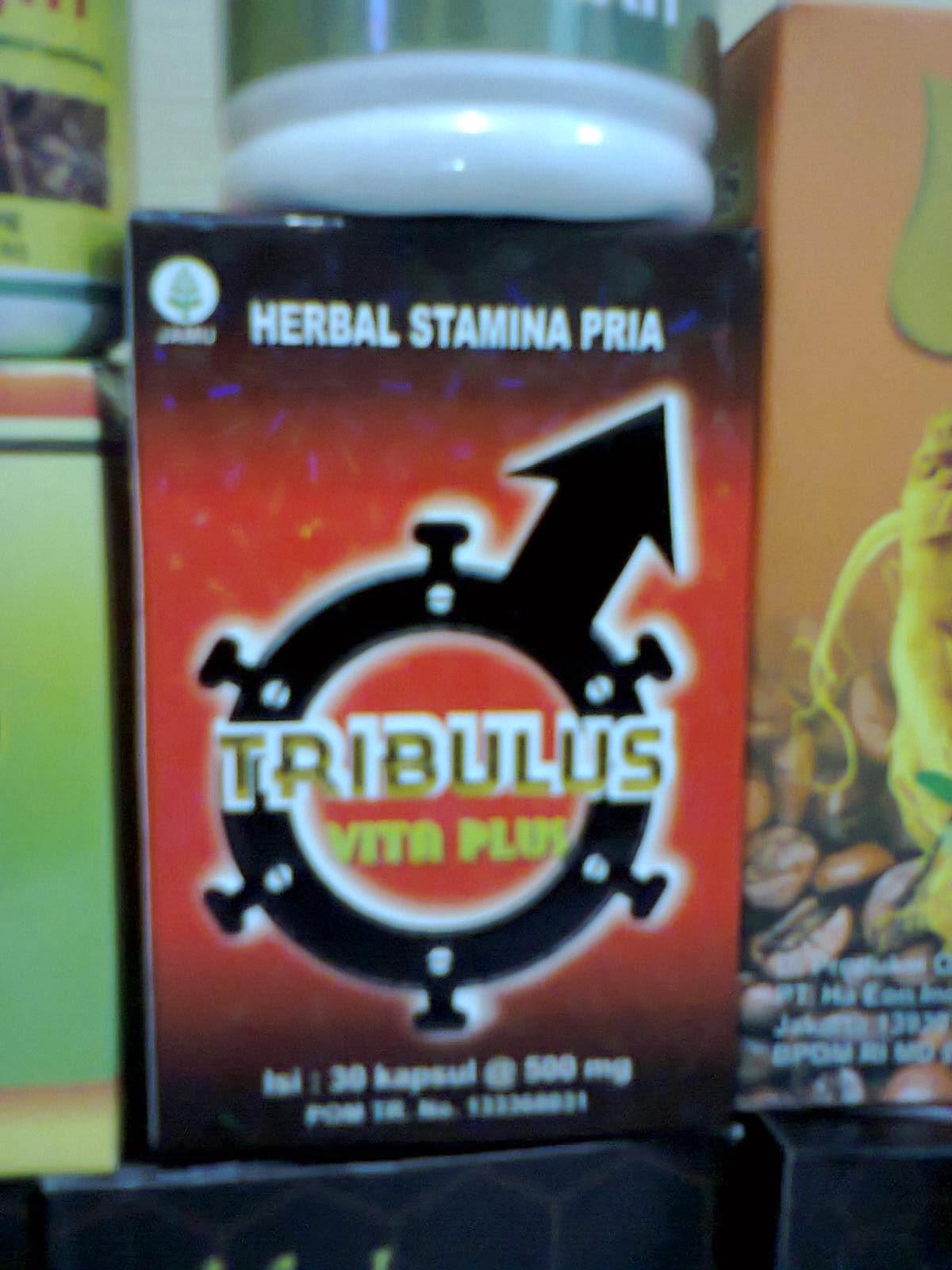 Tribulus Vita Plus Setya Herbal Butik Bubuk Murni Peningkat Testosterone Detail Produk