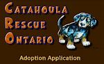 Adopt a Catahoula!