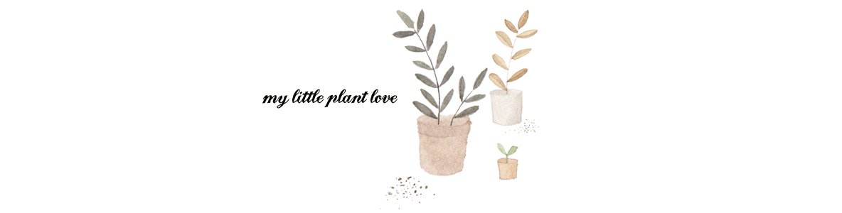 My Little Plant Love