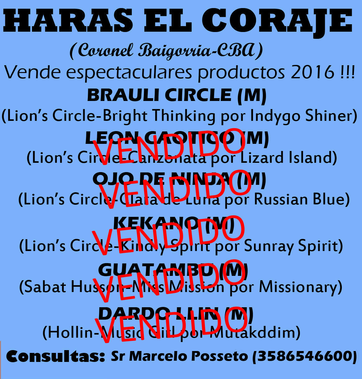 HS EL CORAJE PROD 1