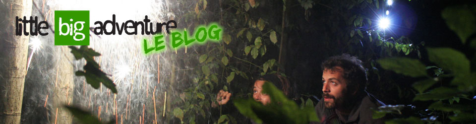 LE BLOG <br>Little Big Adventure