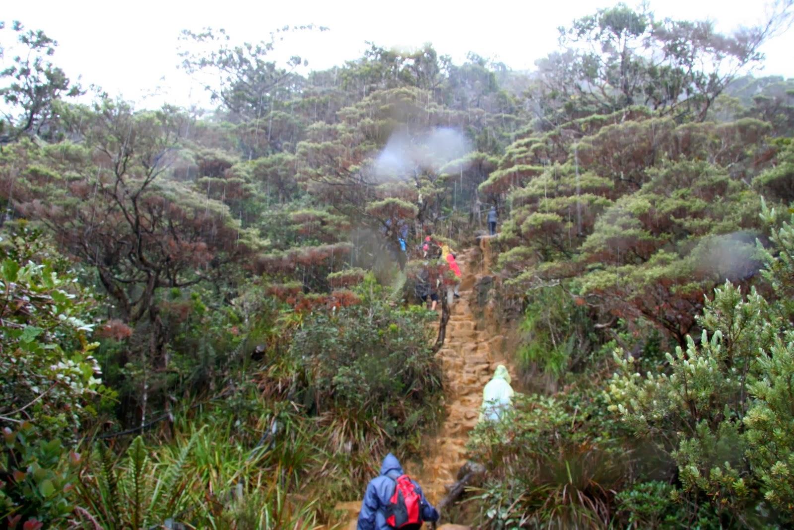 Climbing Mt Kinabalu: Season and Weather: Climbing Mt Kinabalu