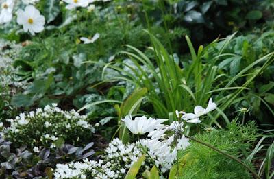 Garden Design & Styles-3