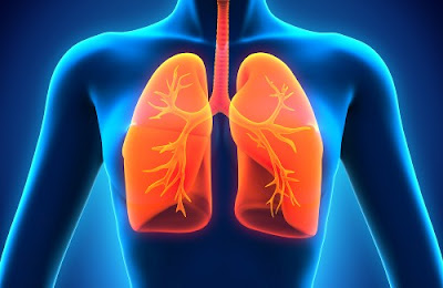 "The ""diet"" to detoxify lungs"