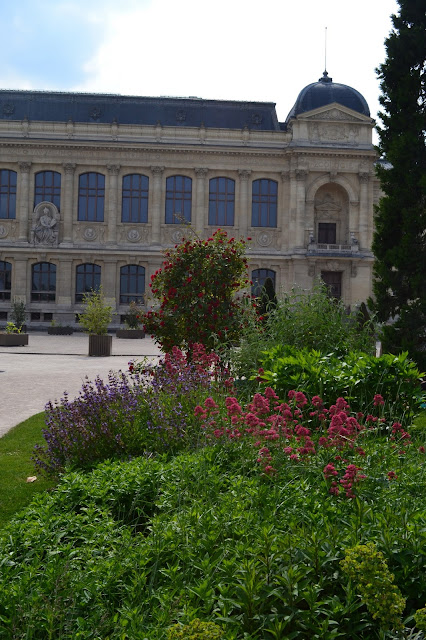 jardin des plantes, thelibrarianchic, blog, blogmode, paris, fashionblog,