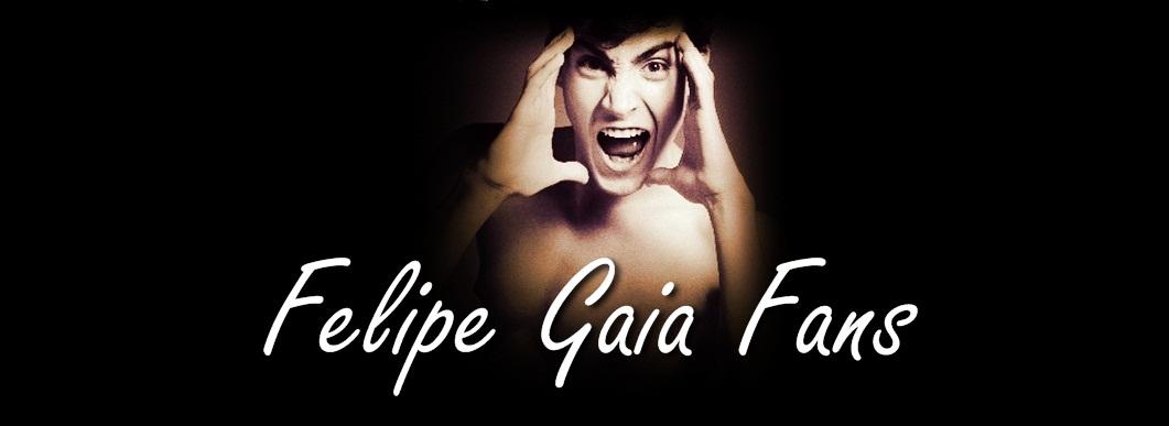 Felipe Gaia fãs.