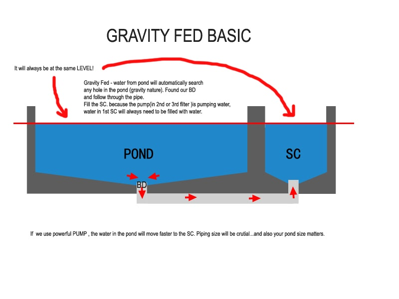 Kolam ikan hiasan gravity fed explaination for Gravity fed pond