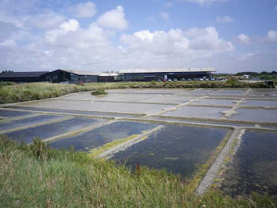the salt pans at guerande in France