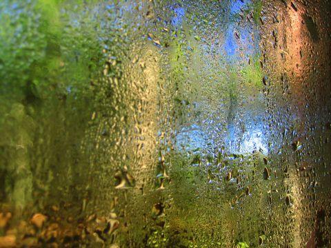 Del alma y otras hierbas bienvenido invierno for Jardin de invierno pablo neruda