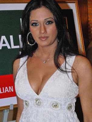 STAR CINEWORLD: Brinda Parekh hot stills | Brinda Parekh hot sdxy