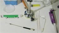 Prácticas de Microbiología
