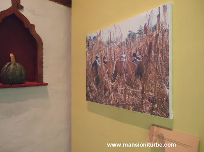 Exposition in Patzcuaro about the history of sweetcorn
