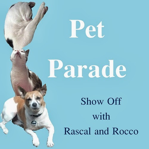 Pet Parade #petblogger #bloghop #RascalandRocco