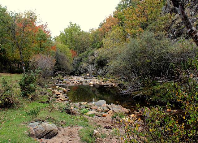 Río Jarama a su paso por La Hiruela