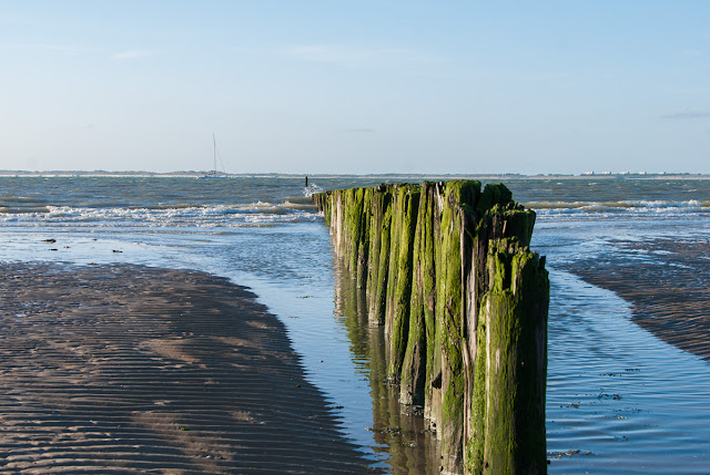 Cadzand-Bad, Niederlande, Nordsee, Reisen, Beach, Holland