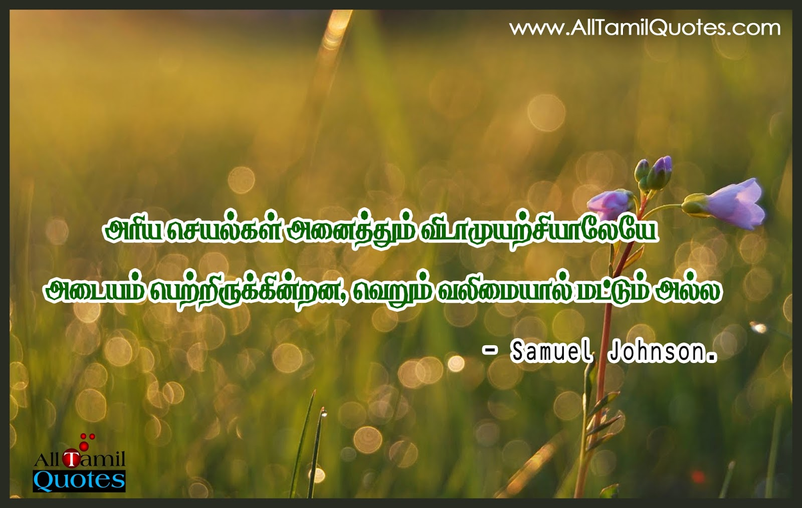 Life Quotes And Thoughts In Tamil