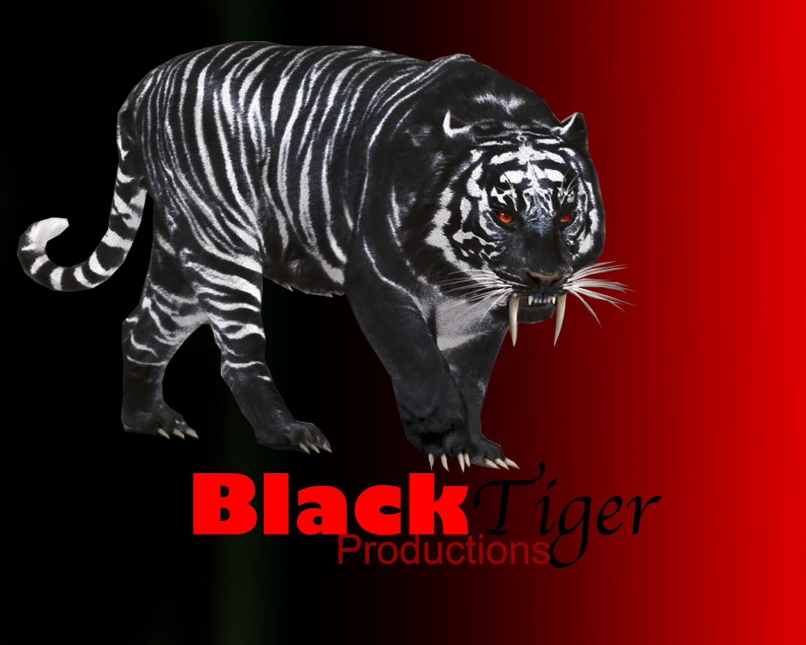 black tigers animal - photo #28
