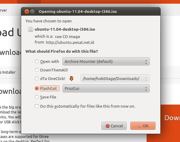 Pilihan ketika mengunduh file dari Firefox