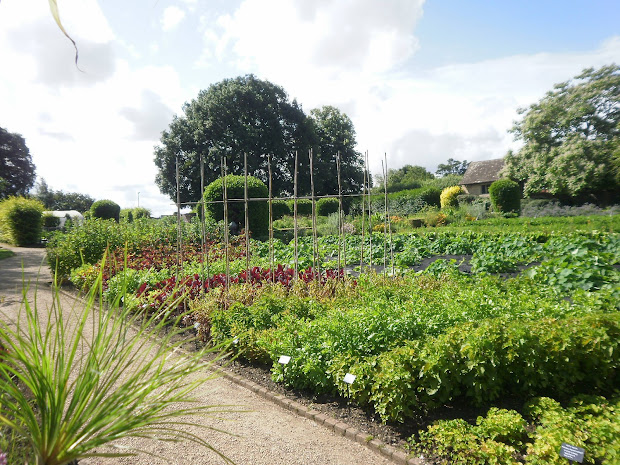 julia shaw garden design