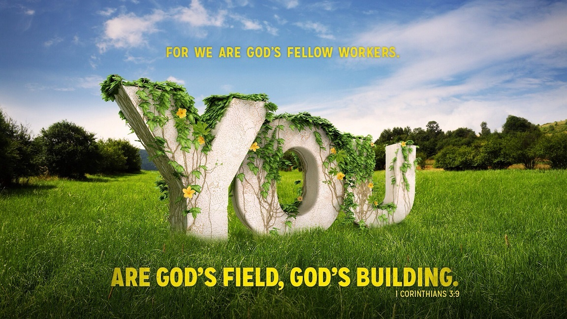 We are God's fellow workers.