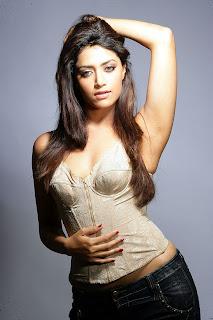 Mamta Mohandas Exclusive  shoot 3.jpg